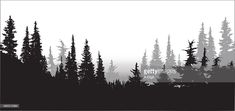 Vector Art : National Forest Pines