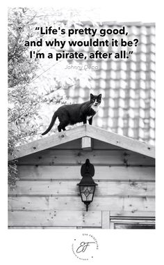 """""""Life's pretty good, and why wouldnt it be? I'm a pirate, after all."""" ― Johnny Depp Quote - Zitat - of the day - cat"""