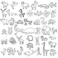 Animal doodle drawing, character animal wildlife, animal pelican cow camel and crocodile, fish and elk, fox and zebr.