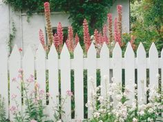 Simple Picket Fence has Rustic Charm - Home and Garden Design Idea's