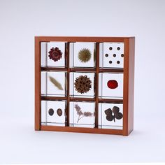 The specimen box set contains nine Sola cubes that comes with a sliding acrylic lid. The specimen box is designed as a frame shelf, which enables the box to be