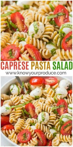 Pasta Salad Make this Caprese Pasta Salad for a delicious vegetarian pasta salad recipe. Everyone will love this easy pasta salad inspired by Caprese Salad, but instead basil tomato mozzarella pasta!Make this Caprese Pasta Salad for a delicious vegetarian Salade Caprese, Caprese Pasta Salad, Easy Pasta Salad, Pasta Salad Recipes, Veggie Recipes, Cooking Recipes, Healthy Recipes, Basil Pasta Salads, Easy Vegitarian Recipes