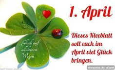 Neuer Monat, Plant Leaves, Germany, Good Mood, Beer Funny, Monthly Pictures, Hugs, Leaf Clover, Deutsch