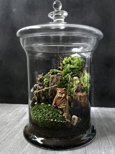 A miniature Yoda or Ewok replica is housed in a wooded landscape made from live moss plants and petrified wood and marbled stone. Comes fully assembled. Set includes instructions for care and a mister bottle. Terrarium Diy, Glass Terrarium, Moss Plant, Ewok, Petrified Wood, Star Wars Episodes, Plant Care, Pick One, All Modern