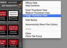 Photoshop Elements Tutorial: Customize Panel Views - Great tips from the Texas Chicks blog.