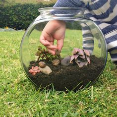 I made this DIY snail terrarium so my bug-obsessed son could keep his little critters without them sliming all over the house!