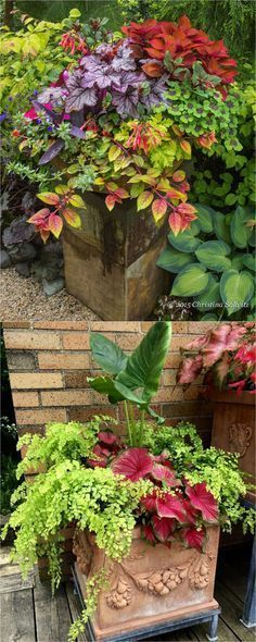How to create beautiful shade garden pots using easy to grow plants with showy foliage and flowers. And plant lists for all 16 container planting designs! - A Piece Of Rainbow 16 Colorful Shade Garden Pots and Plant Lists #flowergarden