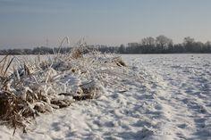 Lower Saxony, Ostfriesland, Winterimpressionen, Westoverledingen