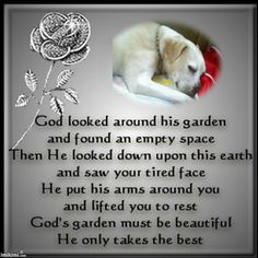 Rest in Peace Dog Poem | Janey Michelle Poe hasn't earned any badges yet... have you?