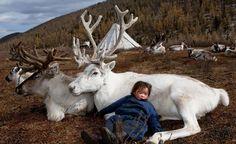 Il fotografo Hamid Sardar-Afkhami ha immortalato nei suoi scatti i Dukha, un popolo nomade della Mongolia