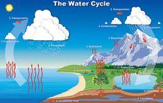 """Daur Air"" Pengertian Dalam Ilmu Biologi & ( Proses Terjadinya ) - http://www.gurupendidikan.com/daur-air-pengertian-dalam-ilmu-biologi-proses-terjadinya/"