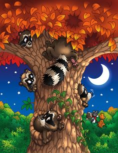 Raccoon Tree ~ by Dan Sharp