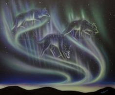 Sky Dance Series of wolves by Amy Keller-Rempp Art. by acrylic on canvas. Original sold, giclee print and fine art cards available. Animal Spirit Guides, Spirit Animal, Canadian Wildlife, Aboriginal Artists, Giclee Print, Northern Lights, Amy, Fine Art, Canvas