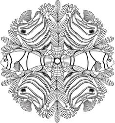 Welcome to Dover PublicationsCreative Haven Deluse Edition Sea Life Mandalas