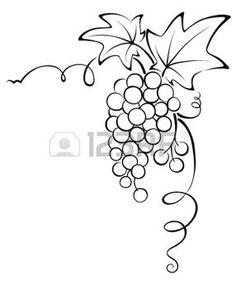 raisin illustration: Conception graphique - Grapevine