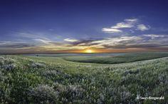 Tallgrass Prairie National Preserve, Flint Hills, Kansas, USA.