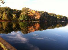 Fall foliage at Horn Pond, Woburn, MA.
