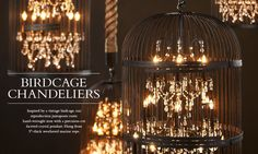 62 Ideas Hanging Bird Cage Decor Restoration Hardware For 2019