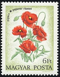 Buy and sell stamps from Hungary. Meet other stamp collectors interested in Hungary stamps. Sell Stamps, Stamp Catalogue, You Are The World, Flower Stamp, Ranunculus, Postage Stamps, Poppies, Floral, Flowers