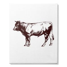 Awesome Tee cow canvas T-Shirts Cow Canvas, Elephant Canvas, Pet Deer, Pet Cows, Happy Cow, Canvas Online, Geek Tech, Cowgirl Jewelry, Personalised Canvas