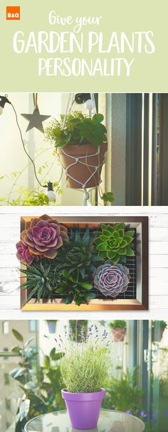 Keeping up with the 2017 garden trends is as easy as 1, 2, 3. Display your plants with this DIY macrame plant holder, brighten up your walls with this DIY vertical succulent wall planter or help the bees and butterflies with these easy to make pollinator pots.