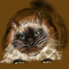 Emilio the cat in a bad mood. Painting Digital, Bad Mood, Fine Art, Cats, Animals, Sickness Humor, Gatos, Animales, Animaux