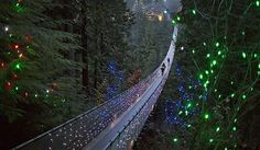 Capilano Suspension Bridge, which has been decked out with Christmas lights, in Vancouver, BC