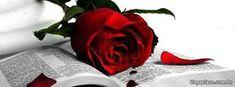 Capas de Rosa sobre Livro para facebook. Fotos de capas para colocar no seu perfil do Facebook. 2175 Cover Pics For Facebook, Facebook Profile, Frank Warren, Religious People, One Rose, Romantic Roses, Fb Covers, Inspiration, Sad