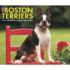 Just Boston Terriers 2018 Box Calendar (Dog Breed Calendar) Gluten Free Food List, Vegan Food List, Healthy Food List, Healthy Foods, Healthy Recipes, Clean Eating Grocery List, Clean Eating Diet, What Foods Are Vegan, Healthy Groceries