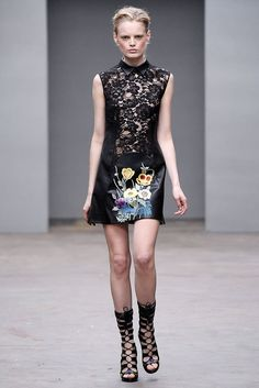 Christopher Kane Fall 2010 Ready-to-Wear Fashion Show - Hanne Gaby Odiele