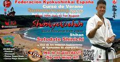 BUDOKAN blog de artes marciales : Summer Camp 2016 con Shihan Sotodate Shinichi - FKE
