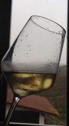 Gualdora Dal Tramonto all'alba_100% Chardonnay grapes White sparkling wine 2014 Harvest