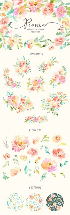 Peonia Watercolor Design Set. watercolor floral design pack complete with Watercolor flowers, leaves, floral patterns, bouquets, wreaths, and frames. This design pack is just what you need for watercolor floral branding, products, and any creation that begs for yummy watercolor floral goodness.