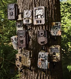 These trail cameras were put to the test; find out which ones win out. #hunting http://www.outdoorlife.com/articles/hunting/2016/08/trail-camera-test-12-best-models-market?dom=odl&loc=hpslider3&lnk=IMG