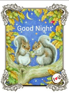 Good Night sister and all,sweet dreams God bless xxx❤❤❤✨✨✨ Cute Images, Cute Pictures, Illustrations, Illustration Art, Good Night Sister, Squirrel Art, Woodland Creatures, Forest Animals, Chipmunks