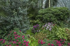 Planted beds in the conservatory at the Lednice-Valtice conservatory in the Czech Republic.