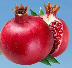 Logo Pomegranate.jpg (510×485)