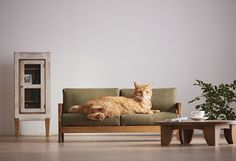 Image result for furniture for cats