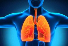 It is very easy to purify your lungs. Here, some of the effective ways that quickly helps to purify lungs in 72 hours or 3 days only.