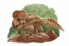 *Protoceratops. Art by Raul Ramos. Protoceratops is a genus of sheep-sized herbivorous ceratopsian dinosaur, from the Upper Cretaceous Period of what is now Mongolia. It was a member of the Protoceratopsidae, a group of early horned dinosaurs.