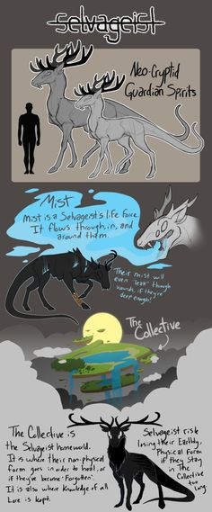 -Selvageist Species Info Sheet 1- by katxicon.deviantart.com on @DeviantArt