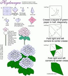 A Missive from Coriander Bats: Spring Flowers with Origami