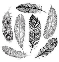 Set of ethnic feathers vector - by transia on VectorStock®