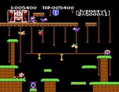 Wpid-donkey-kong-jr.-screenshot.jpg (1460×1136)
