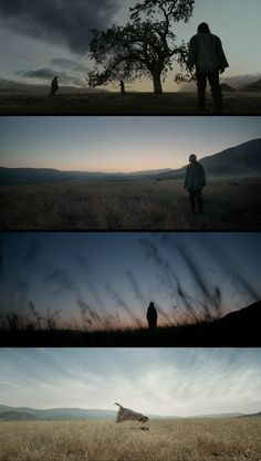 The Revenant by Alejandro Iñárritu - glorious landscapes (cinematographer…