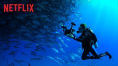 In Mission Blue, Directors Fisher Stevens and Robert Nixon highlight the life and work of well-known environmentalist, marine biologist, and oceanographer Sylvia Earle. The film tells the story of her journey around the world to raise awareness for the declining condition of the Earth's oceans.