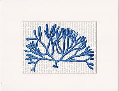 Cobalt blue coral sea creature printed as dictionary art print wall decor on antique book page choice. Mats available. Item No. E224