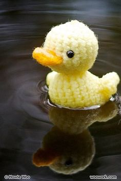 Knitted Duck?  Nope crocheted...
