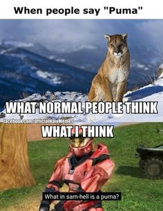 Also, unicorns and bigfoot. Red vs. Blue
