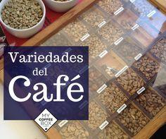 Variedades de café en el mundo botánico.